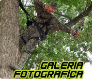 Galeria de fotografica
